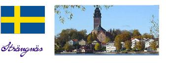 Domkirken i Strängnäs